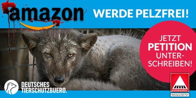 amazon pelfrei